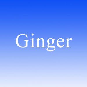 Ginger Restaurant