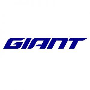 Giant Toronto Bicycles